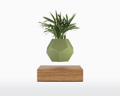 lyfe silicone skin olive flyte on webshop wooden amsterdam