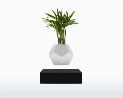 lyfe flyte levitating plant black base scaled 1.jpg