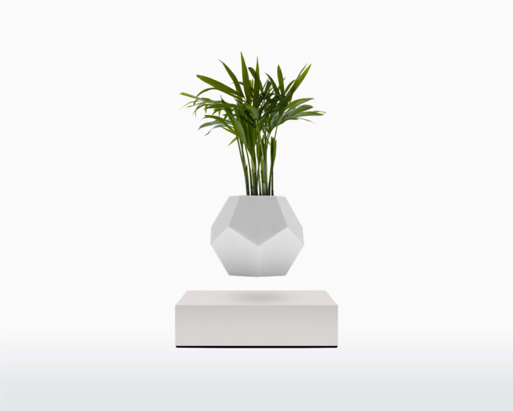 lyfe flyte levitating plant white base scaled 1.jpg